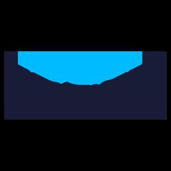 breier-palmes-logo